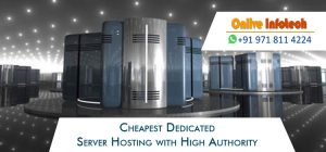 Cheap Dedicated Server Hosting with High Authority from Onlive Infotech